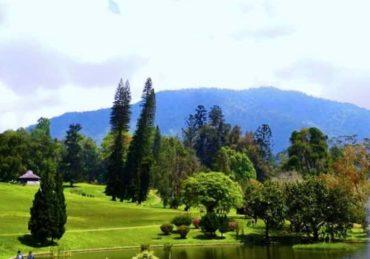 Tempat Piknik di Cibodas Cianjur yang Hits dan Banyak Dikunjungi